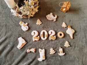 Môj knižný rok 2020